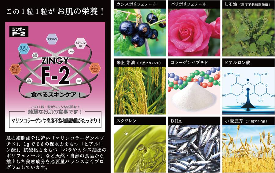 zingy_f-2_01 ジンギーF2