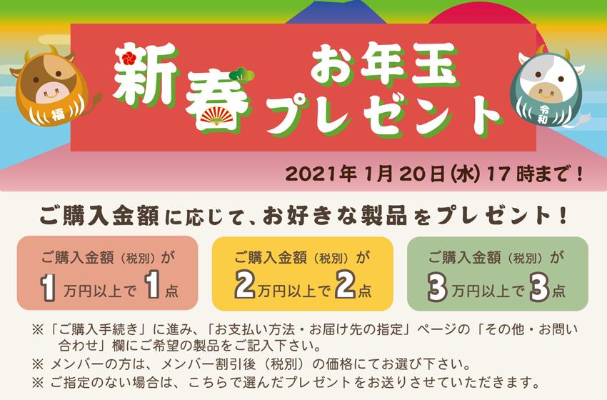otoshidama_01