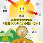 No.16 花粉症を改善するには?!【医食同源】
