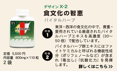 design_03_x-2