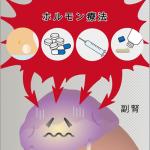 No.19 更年期障害のホルモン療法でがんのリスク?!【医食同源】