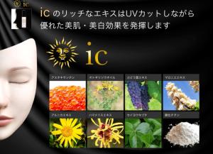 15_ic_img2