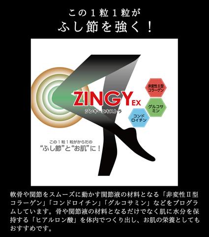 zingy-ex_01