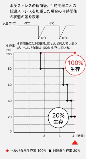 ストレス実験-グラフ
