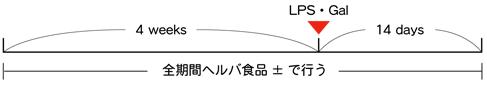 試験期間-図